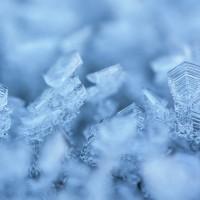 La chaîne du froid chez les professionnels